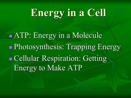 Energy in a Cell ATP: Energy in a Molecule