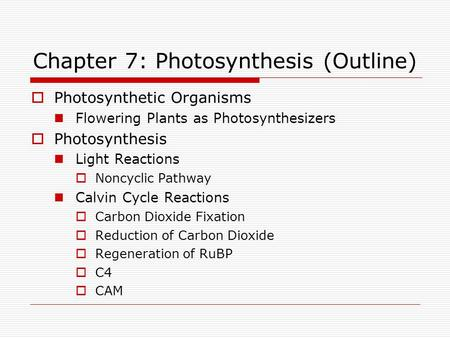 Chapter 7: Photosynthesis (Outline)  Photosynthetic Organisms Flowering Plants as Photosynthesizers  Photosynthesis Light Reactions  Noncyclic Pathway.