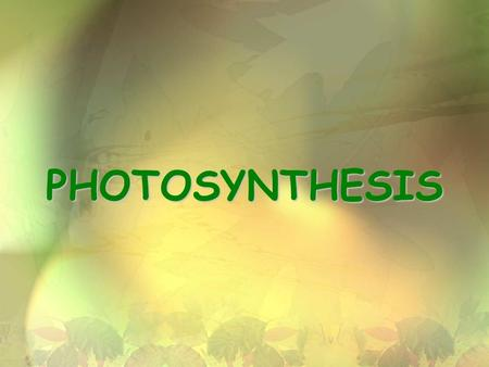 PHOTOSYNTHESIS. 2 Photosynthesis 6CO 2 + 6H 2 O  C 6 H 12 O 6 + 6O 2 glucose SUN photons.