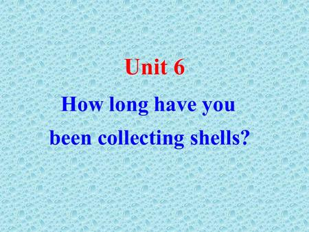 How long have you been collecting shells? Unit 6.