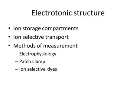 Electrotonic structure Ion storage compartments Ion selective transport Methods of measurement – Electrophysiology – Patch clamp – Ion selective dyes.