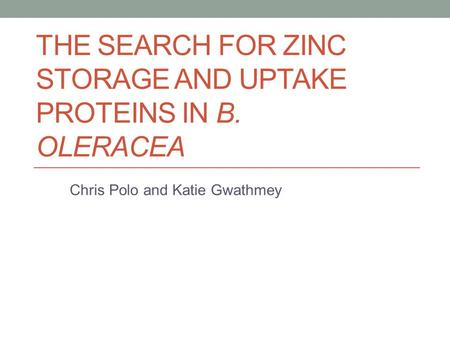 THE SEARCH FOR ZINC STORAGE AND UPTAKE PROTEINS IN B. OLERACEA Chris Polo and Katie Gwathmey.