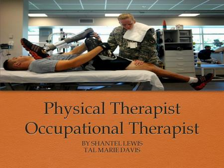 OVERVIEW  Physical Therapist- A certified professional who helps with physical ailment by providing exercises. Physical Therapist help injured or ill.