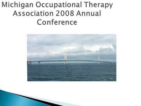 Michigan Occupational Therapy Association 2008 Annual Conference.