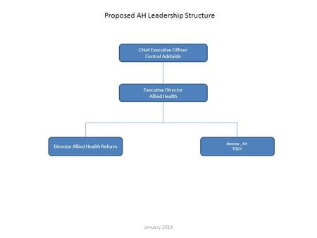 Executive Director Allied Health Director Allied Health Reform Director, AH TQEH Proposed AH Leadership Structure Chief Executive Officer Central Adelaide.