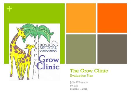 + The Grow Clinic Evaluation Plan Julia Hilbrands PH 221 March 11, 2015.