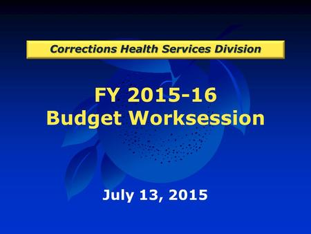 FY 2015-16 Budget Worksession Corrections Health Services Division July 13, 2015.