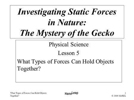 What Types of Forces Can Hold Objects Together? 1 © 2009 McREL Investigating Static Forces in Nature: The Mystery of the Gecko Physical Science Lesson.