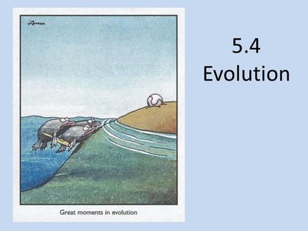 5.4 Evolution. Define Evolution Evolution is the process of cumulative change in the heritable characteristics of a population Charles Darwin at age 22.