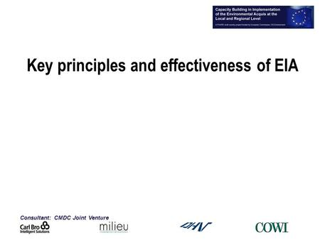 Consultant: CMDC Joint Venture Key principles and effectiveness of EIA.
