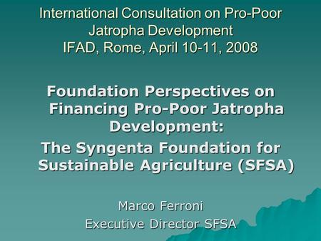 International Consultation on Pro-Poor Jatropha Development IFAD, Rome, April 10-11, 2008 Foundation Perspectives on Financing Pro-Poor Jatropha Development: