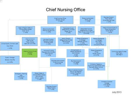 Chief Nursing Officer Barbara Mclean (1 WTE) Executive Assistant Patricia Groves (0.6) (1 WTE) Infection Control Lead Nurse Tracey Sharpe Band 8A (0.6.