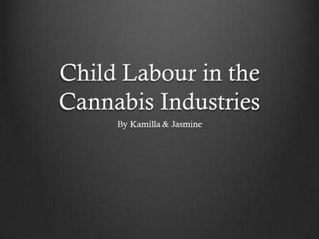 Child Labour in the Cannabis Industries By Kamilla & Jasmine.