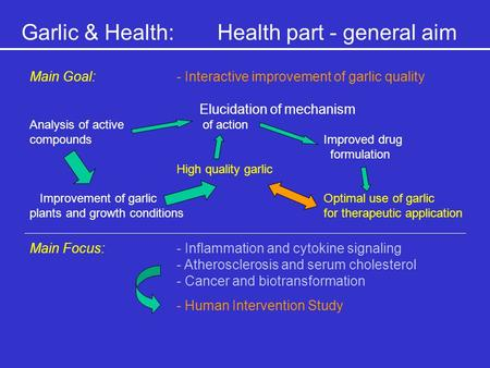 Garlic & Health:Health part - general aim Main Goal:- Interactive improvement of garlic quality Elucidation of mechanism Analysis of active of action compoundsImproved.