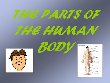 THE PARTS OF THE HUMAN BODY. The human body The human body is a wide-ranging, interesting topic which can be used to teach not only language skills, but.