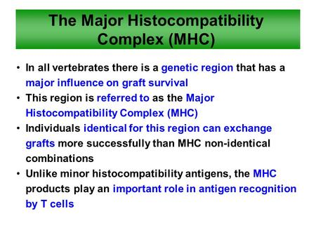 The Major Histocompatibility Complex (MHC) In all vertebrates there is a genetic region that has a major influence on graft survival This region is referred.