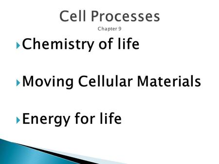 Cell Processes Chapter 9