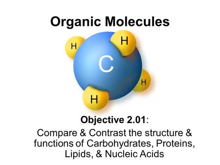 Organic Molecules Objective 2.01: Compare & Contrast the structure & functions of Carbohydrates, Proteins, Lipids, & Nucleic Acids.