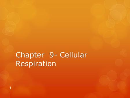 Chapter 9- Cellular Respiration 1. 9.1 A. Harvesting the Energy in Food 1. both producers and consumers undergo cellular respiration to make ATP from.