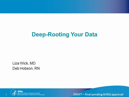 DRAFT – final pending AHRQ approval 1 Deep-Rooting Your Data Liza Wick, MD Deb Hobson, RN.