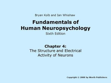 Fundamentals of Human Neuropsychology Sixth Edition Chapter 4: The Structure and Electrical Activity of Neurons Copyright © 2008 by Worth Publishers Bryan.