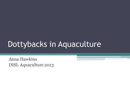 Dottybacks in Aquaculture Anna Hawkins DISL Aquaculture 2013.