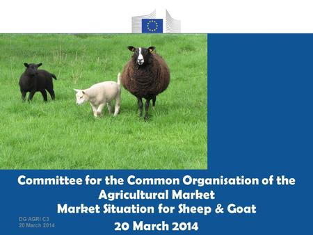Group housing of pregnant sows as applicable from 1 January 2013 Committee for the Common Organisation of the Agricultural Market Market Situation for.