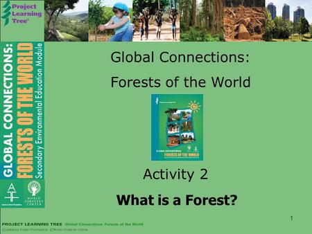 1 Global Connections: Forests of the World Activity 2 What is a Forest?