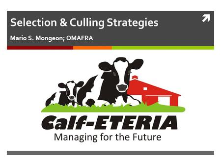  Selection & Culling Strategies Mario S. Mongeon; OMAFRA.