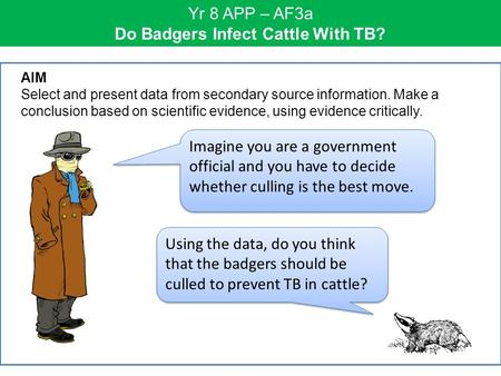 Yr 8 APP – AF3a Do Badgers Infect Cattle With TB? Imagine you are a government official and you have to decide whether culling is the best move. AIM Select.