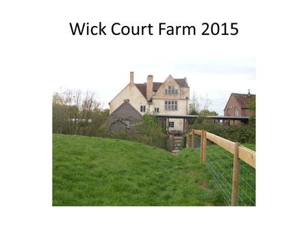 Wick Court Farm 2015. Year 4 and 5 had a 'farmtastic' time at Wick Court! The week was jam packed with a variety of farm jobs and all children quickly.