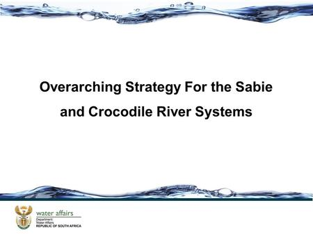 Overarching Strategy For the Sabie and Crocodile River Systems.