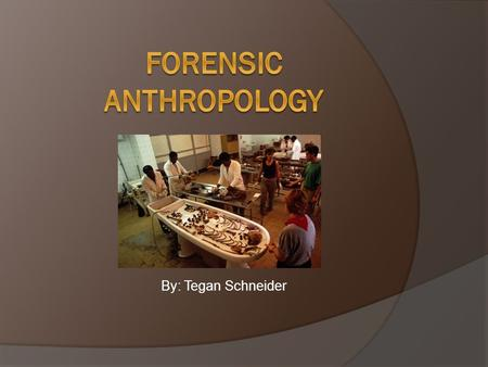 By: Tegan Schneider.  Forensic anthropologists identify human remains to help in the detection of crime & support their evidence in court. In the future,