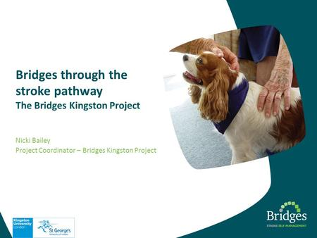 Bridges through the stroke pathway The Bridges Kingston Project Nicki Bailey Project Coordinator – Bridges Kingston Project.