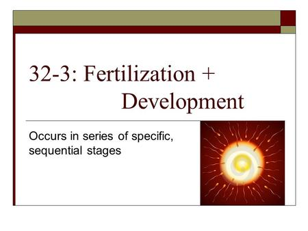 32-3: Fertilization + Development Occurs in series of specific, sequential stages.