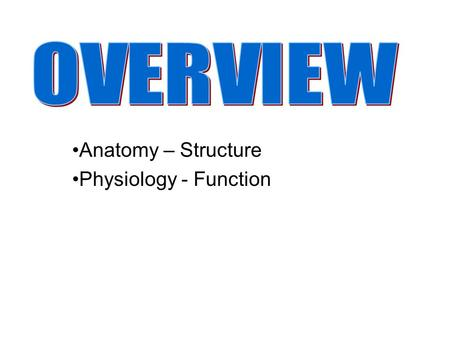 Anatomy – Structure Physiology - Function. Gross Anatomy Regional Anatomy Systemic Anatomy Surface Anatomy Developmental Anatomy Microscopic Anatomy –Cytology.