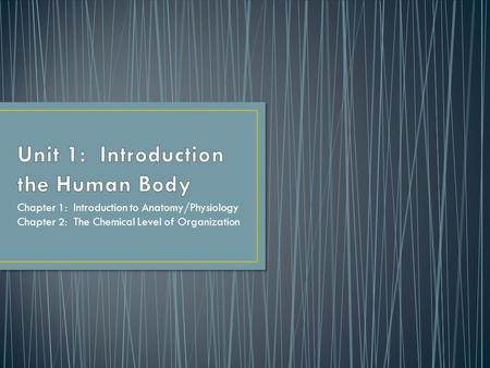 Unit 1: Introduction the Human Body