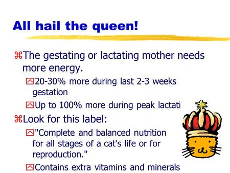 All hail the queen! zThe gestating or lactating mother needs more energy. y20-30% more during last 2-3 weeks gestation yUp to 100% more during peak lactation.