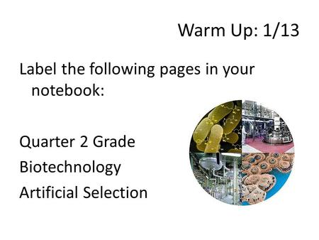 Warm Up: 1/13 Label the following pages in your notebook: Quarter 2 Grade Biotechnology Artificial Selection.