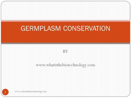 BY www.whatisthebiotechnology.com GERMPLASM CONSERVATION 1 www.wahtisthebiotechnology.com.