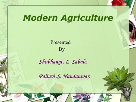 Modern Agriculture Presented By Shubhangi. L.Sabale. Pallavi.S. Nandanwar.