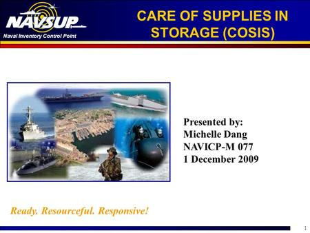 CARE OF SUPPLIES IN STORAGE (COSIS)