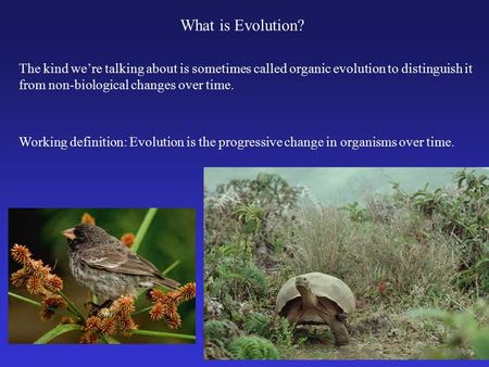 What is Evolution? The kind we're talking about is sometimes called organic evolution to distinguish it from non-biological changes over time. Working.