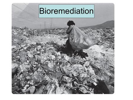 Bioremediation. Hydraulic Fracturing Why do we even need it? We can't seem to stop polluting –Inorganics Uranium, technetium, sulfur, sulfuric acid –Explosives.