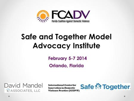 Safe and Together Model Advocacy Institute February 5-7 2014 Orlando, Florida International Center for Innovation in Domestic Violence Practice (ICIDVP)