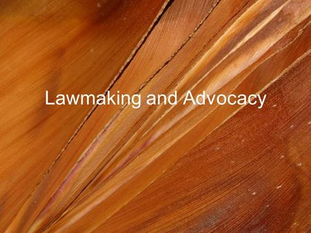 Lawmaking and Advocacy. Laws and Courts Agencies – government groups that create rules and regulations to make laws more specific (TSA, DOT, OSHA) Courts.