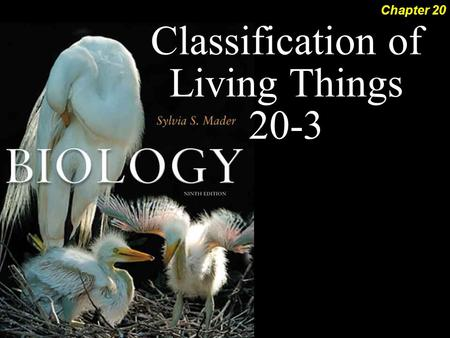 Classification of Living Things 20-3 Chapter 20. Classification of Living Things 2 Cladistic Systematics Now that we know how to read phylogenetic trees….how.