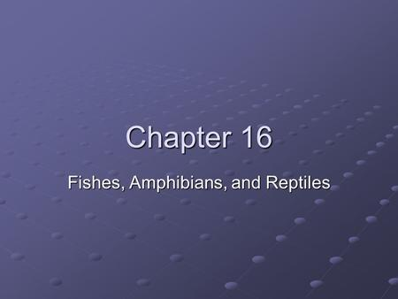 Fishes, Amphibians, and Reptiles