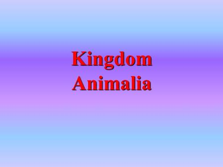 Kingdom Animalia. They are complex, multicellular organisms Their cells have a nucleus and organelles Their cells do not have a cell wall Most of them.
