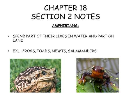 CHAPTER 18 SECTION 2 NOTES AMPHIBIANS: SPEND PART OF THEIR LIVES IN WATER AND PART ON LAND EX…..FROGS, TOADS, NEWTS, SALAMANDERS.